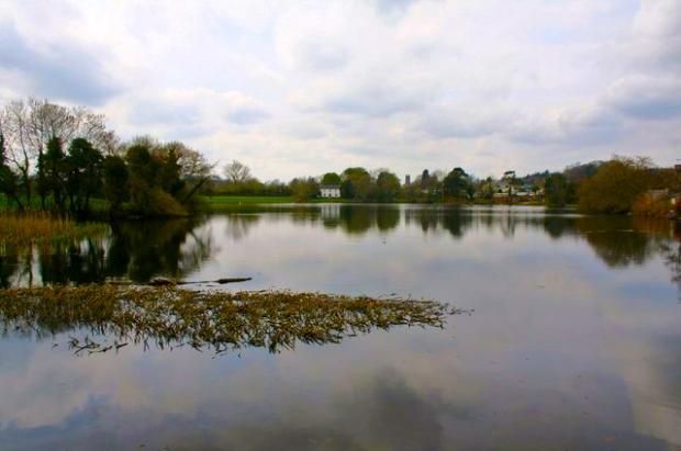 Dunmanway Lake